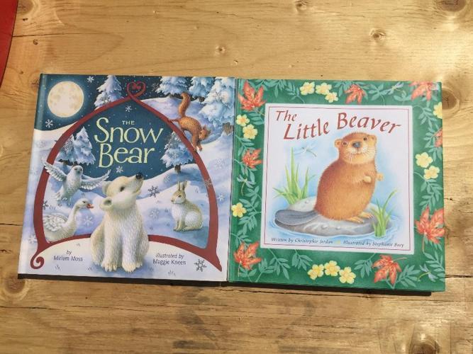 children?s hardcover books