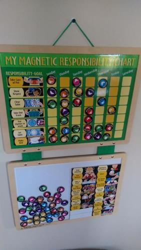 EUC Melissa and Doug Responsibility Chart