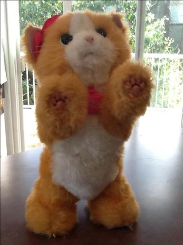 Fur Real Friends kitty