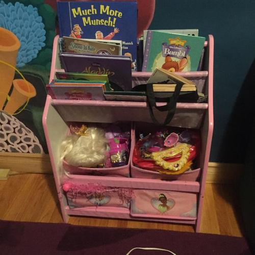 Princess Bookcase and Storage