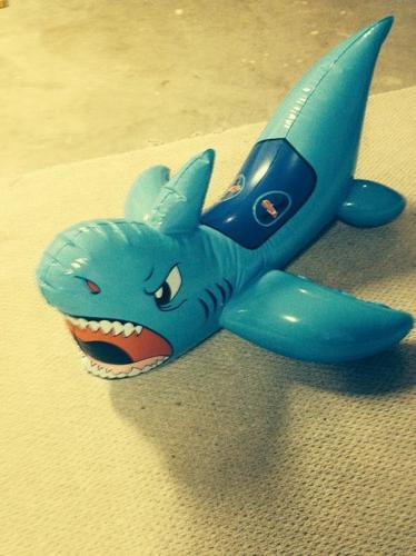 SHARK FLOATIE