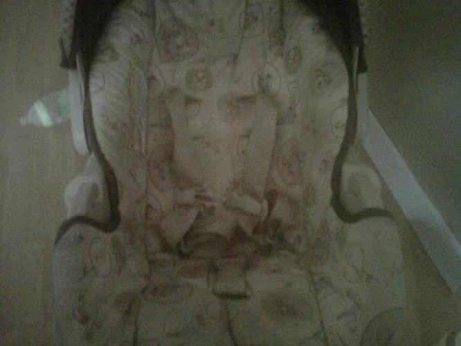 Winnie The Pooh Carseat & Stroller