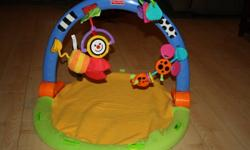 3-in-1 baby gym by Fisher Price with 4 toys that attach to it.  In excellent condition - only used a few times; would be great as a second gym to keep at the grandparents house!  $10.00 OBO.