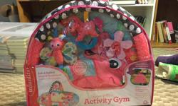 Baby explore and store activity gym.