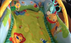 Baby Einstein Playmat with three toys, a mirror and a pillow. Excellent condition, clean and from a smoke free house. Pick up or drop off in Stittsville/Kanata