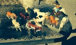 Lots of mini horses and one large horse (not shown well in the photo) for sale all together.