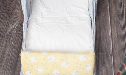 Great little sleeper that can be placed on your own bed for co-sleeping or on the floor. Has it's own little night light and folds to reveal a handle. Great for travelling with baby! Clean, from no pet no smoking home.