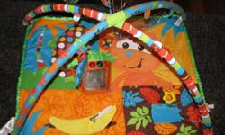 Cute little momkey mat,comes with toys that hang and a music tiki house that lights up,and has a mirror too.Lots of fun,fits perfectly into playpen.  I used the music house thing in the car lots. Kelsey 250-260-4896