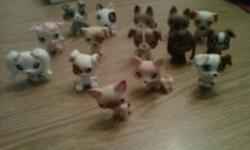 32 Littlest Pet Shop Pets in Excellent shape! Some rare and very hard to find. Asking $55.00 but will consider all offers. Some of the pets included: Cats Dogs Giraffe Punk Pet Butterfly Mouse Lizard Duck Ferret Pig Birds & MORE