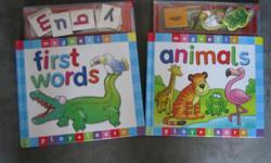 Magnetic educational books