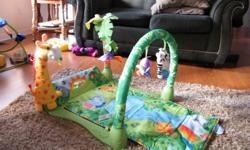 My daughter loved this mat.  There is a roller ball, mirror, and peekaboo lizard that are great for tummy time.