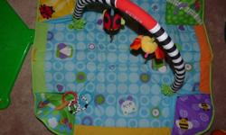 Fisher Price play mat, folds up with carrying handle.  Has attachable toys and rings.  Smoke free home.