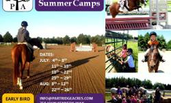 The 2016 Partridge Summer Camps are now open for Registration. Join us for 6 weeks of summer camp FUN! Camps are for ages 5-15 from riders with no experience (Pony Playground Summer Camp) to those already showing, or wanting to show for the first time