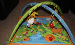 Excellent condition. Retails for $99 Has many toys to hang from the bars and a mirror/sunshine for babies to look in. a squeak toy on the mat/truck. Hours of fun for your little one. Easy to wash portable. Great for boys or girls. Asking $20.00 call